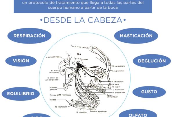 regulación función aragao